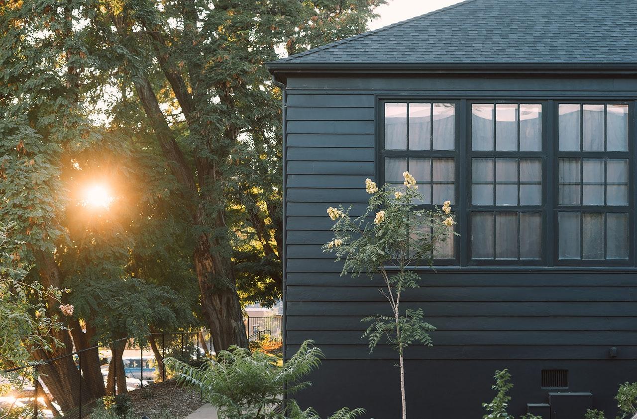 Que planter le long d'un mur de maison ?